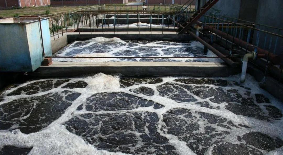 住建部:如何应对新冠病毒从马桶到水环境的潜在传输途径?