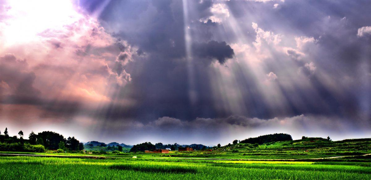 紫外光辅助电化学氧化去除污水中的抗性细菌与基因